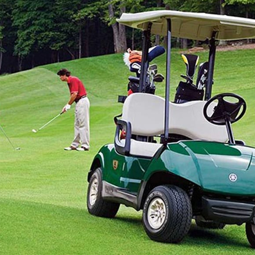 golf cart lithium batteries